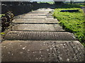 ST6452 : Stone memorials in St John's church yard by Neil Owen