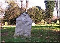 TG2109 : The grave of Frederick Andrew Warner by Evelyn Simak