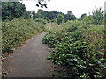 SP1390 : Site of the Firs Estate and Berrandale Road, Castle Bromwich, northeast Birmingham by Robin Stott