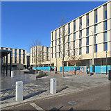 TL4259 : Eddington Market Square by John Sutton