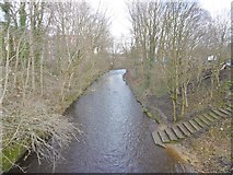 SJ9398 : Ashton-under-Lyne, River Tame by Mike Faherty