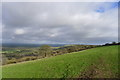 ST7806 : Chitcombe Down; the view we should have had by Tim Heaton