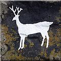 NU1735 : Stag Rock, Blackrocks Point by Ian Taylor