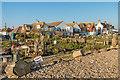 TQ6604 : Beach gardens by Ian Capper