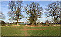 SP2369 : Hedgerow oaks and farm buildings, Beausale by Robin Stott