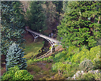 NU0702 : The Iron Bridge, Cragside by Ian Taylor