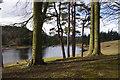 NU0702 : Tumbleton Lake, Cragside by Ian Taylor