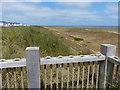 TG5310 : Sand dunes at North Denes by Mat Fascione