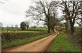 SX7958 : Lane near Lower Bowden House by Derek Harper