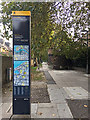 TQ3480 : Totem by The Highway, Shadwell by Robin Stott