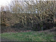 SE1322 : Disused quarry at Reins Wood by Richard Kay