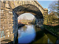 SD7910 : River Irwell, Daisyfield Viaduct by David Dixon