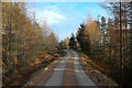 NH5695 : Track in Carbisdale Wood, Ross-shire by Andrew Tryon
