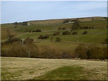 NY9539 : Lower end of the Rookhope valley by Oliver Dixon