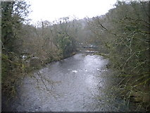 SK3155 : River Derwent from Cromford Canal aqueduct by Richard Vince