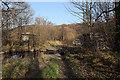 NJ2945 : Causeway to the Heathery Isle by Anne Burgess