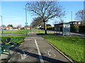 NZ5823 : Dual use path beside South Avenue, Dormanstown, Redcar by JThomas