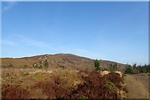 SJ1662 : Path up Moel Famau from the south-east by Eirian Evans
