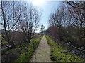 SU5405 : Path beside Titchfield Canal by Chris Gunns