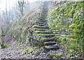SE0825 : Steps on Halifax FP733 in Snake Hill Wood by Humphrey Bolton