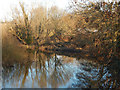 TG2209 : River Wensum, Norwich by Stephen McKay