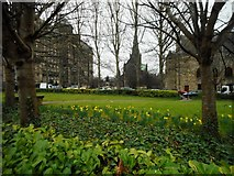 NS6065 : Greenspace beside Provand's Lordship by Richard Sutcliffe
