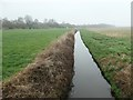 SD4615 : Large drain on Mawdesley Moss by Christine Johnstone