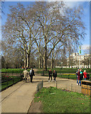 TQ2979 : In St James's Park by John Sutton