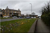 SE1437 : Otley Road by habiloid