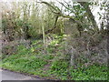 SO9562 : Steps to stile but no footpath, Mere Green, Hanbury by Jeff Gogarty