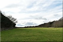 TL8866 : Great Barton: A large field next to Holy Innocents Church by Michael Garlick