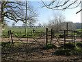 SJ7667 : Iron gates on Hermitage Lane by Stephen Craven