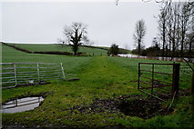H4869 : A wet field, Aghagallon by Kenneth  Allen