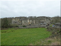 SM7525 : View to the ruins of the Bishop's Palace in St Davids by Jeremy Bolwell