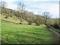 SK2066 : Northern slope of Lathkill Dale by Trevor Littlewood