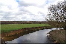 TL9825 : River Colne by Glyn Baker