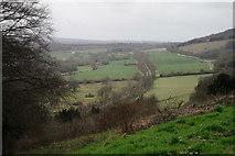 TQ1450 : View From Denbies Hillside by Peter Trimming