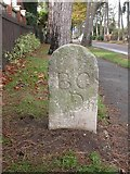 SZ1192 : Old Boundary Marker by Milestone Society