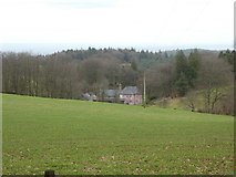 ST1536 : Great Quantock Farm seen from the Drove Road by David Smith