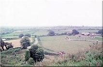 S0429 : Knockgraffon Motte view north by Martin Richard Phelan