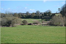 SU6017 : Meon Valley south of Droxford by David Martin