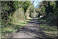 SU6117 : Path on former railway between Soberton and Droxford by David Martin