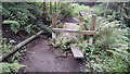 SD9523 : Stile and footbridge on path below Causeway Wood Road, Lumbutts  by Phil Champion