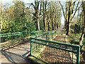 TQ2491 : Footbridge over Dollis Brook by Des Blenkinsopp