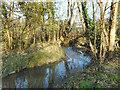 TQ2491 : Dollis Brook near Mill Hill by Des Blenkinsopp