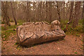 NC4901 : Carved Wooden Bench in Ravens Rock Gorge, Sutherland by Andrew Tryon