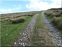 SD8997 : Bridleway climbing up to Appletree Thwaite by Christine Johnstone