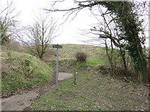 TQ4863 : Public footpath near Maypole by Malc McDonald