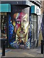 SK3487 : The David Bowie Mural in Sheffield by Neil Theasby