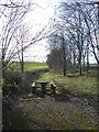 SJ5106 : Picnic table and old road at Cantlop Bridge by David Smith